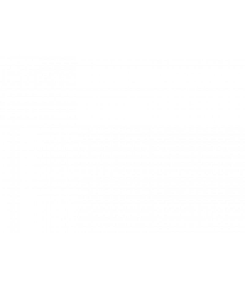 Ruggieri P. R. - Il girasole